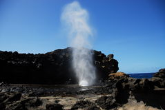 Blow hole Stock Images