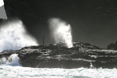 The Blow Hole. Waves crashing into lava shelve that has a lava tube which acts as a conduit for a gyser action Stock Photography
