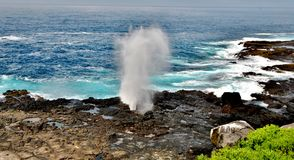Blow Hole Stock Photos