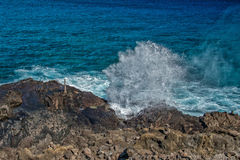 Blow hole in hawaii oahu Stock Photography