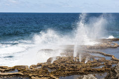 Blow Holes in Tonga, Pacific Ocean Royalty Free Stock Photos