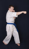 Blow of the karateka Stock Photography