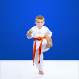 Blow leg is training athlete on a blue background Royalty Free Stock Photo