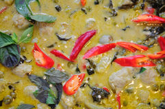 A blow of Thai beef green curry Royalty Free Stock Photos