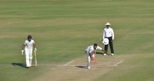 Fast Bowler in Cricket Match royalty free stock photos