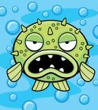 Blowfish Royalty Free Stock Image
