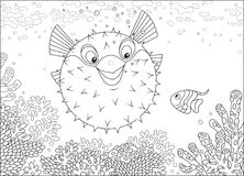 Blowfish and Butterflyfish among corals. Exotic puffer fish and a butterfly fish swimming on a reef in a tropical sea, black and white vector illustration in a Stock Photos