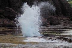 Blowhole Στοκ φωτογραφίες με δικαίωμα ελεύθερης χρήσης
