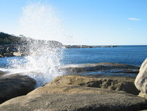 Blowhole at Bicheno royalty free stock photo