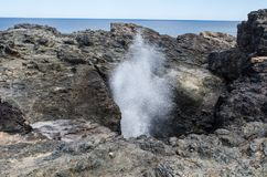 Blowhole is major tourist attraction. Under certain sea conditions, the blowhole can spray water up to 25 metres at Kiama, NSW. The Blowhole is major tourist royalty free stock photography