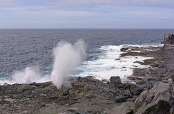 Blowhole on a rugged coast Stock Photos