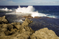 The Blowholes, Tonga. The spectacular blowholes where ocean water is pushed through holes in the rocks to form geysers, on the coast of Tongatapu, Tonga royalty free stock image