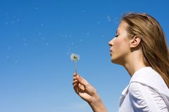 Blowing on dandelion Stock Photos