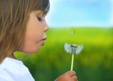 Blowing dandelion 2. A little cute girl blowing a dandelion stock photo
