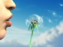 Blowing on a dandelion. Young woman lips are blowing on a dandelion over a beautiful sky background. Digital illustration royalty free stock photo