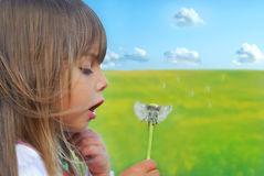 Blowing dandelion. Cute little girl blowing dandelion Royalty Free Stock Image