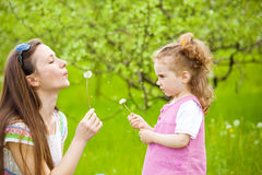 Blowing dandelion away Stock Photo