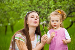 Blowing dandelion away Royalty Free Stock Photography