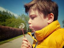 Blowing a dandelion. Little  boy blowing a dandelion Royalty Free Stock Photography