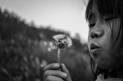Blowing dandelion rural girl Stock Images