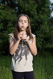 Blowing into dandelion Stock Images