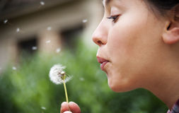 Blowing dandelion. Young woman blowing a dandelion with blurred background Royalty Free Stock Photo