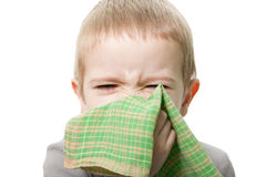 Blowing nose Royalty Free Stock Image