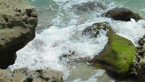 Blowing rocks state park. In Jupiter Florida royalty free stock photo