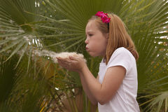 Blowing Seeds in Hands Royalty Free Stock Photo