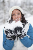 Blowing snow Stock Image
