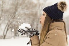 Blowing snow away Royalty Free Stock Photos