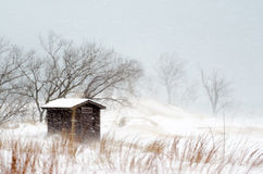 Blowing snow and building Royalty Free Stock Image
