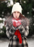 Blowing snow Royalty Free Stock Images