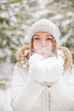 Blowing Snowflakes Stock Photography
