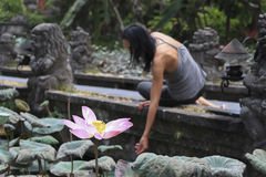 Blown lotus flower and girl in the background Stock Photos