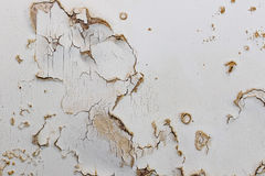 Blown plaster on an old internal wall. Damaged damp plasterwork. In need of repair. House renovation and building work Royalty Free Stock Photography