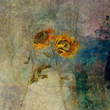 Blown Sunflowers. Two Dried wind blow sunflowers. Photo based mixed medium image Stock Photos