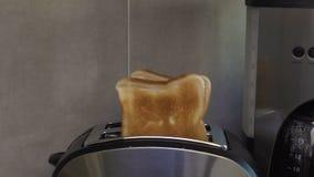 Blozende toost die synchroon uit broodrooster springen die met korst en geur aantrekken stock videobeelden