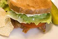 Blt. A fresh BLT sandwich with lots of bacon, fresh tomatoes,  lettuce and mayo Royalty Free Stock Photography