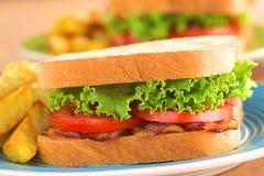 BLT (Bacon Lettuce Tomato) Sandwich Royalty Free Stock Photos
