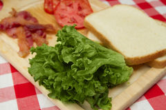 Blt fixings Royalty Free Stock Photos