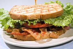 BLT with Mayo Stock Photography