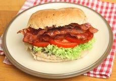 BLT ou rolo do bacon, da alface & do tomate Imagem de Stock Royalty Free