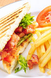 BLT sandwich Royalty Free Stock Images