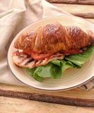 BLT sandwich royalty free stock photos