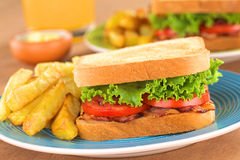 BLT Sandwich with French Fries Royalty Free Stock Photography