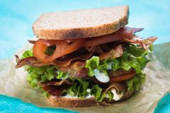 Bacon lettuce and tomato sandwich. BLT sandwich with fried bacon, lettuce and tomato in slices of bread Royalty Free Stock Images