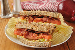 BLT Sandwich on Whole Wheat Bread Royalty Free Stock Images