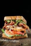 BLT-smörgås på mörk bakgrund Arkivbild