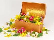 Blütenkasten Lizenzfreie Stockbilder